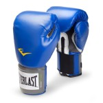 trainning boxing gloves