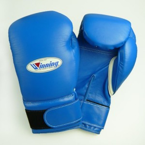 best winning boxing gloves